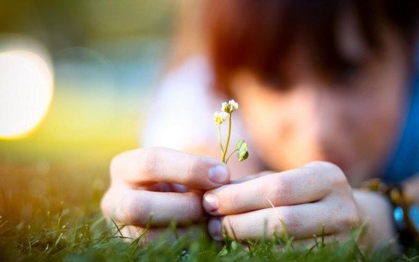 Person-Hands-Holding-Small-Flower-600x375